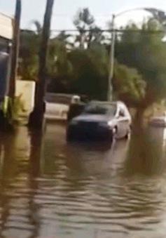 """Nước biển dâng đe dọa """"nuốt trọn"""" khu du lịch Miami"""