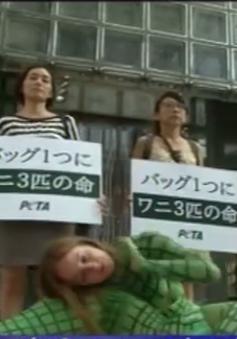 Nhật Bản: Biểu tình phản đối hãng Hermes sản xuất túi từ da động vật