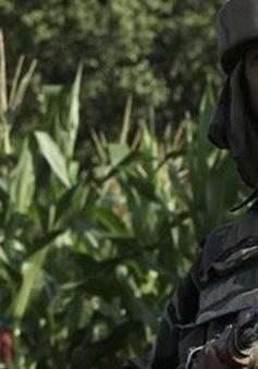 Binh sĩ Ấn Độ, Pakistan đấu súng tại biên giới ở Kashmir
