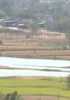Kinh nghiệm chống khô hạn ở Bình Thuận