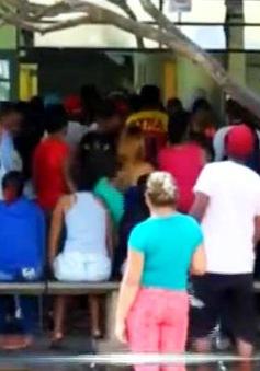 Brazil: Bùng phát dịch sốt xuất huyết