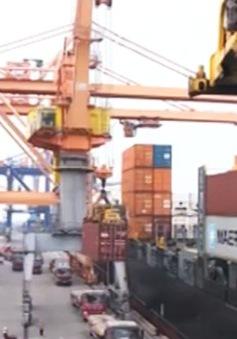 Hàng nghìn container hàng tồn đọng tại các cảng biển quốc tế