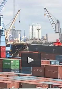 TP.HCM: Đề xuất cho phép vận chuyển hàng trung chuyển quốc tế giữa các cảng biển
