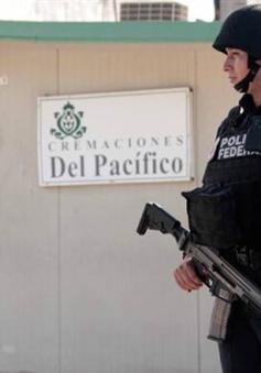 Cảnh sát Mexico tìm thấy 60 thi thể trong lò hỏa táng bỏ hoang
