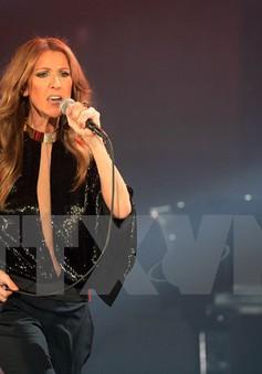 "Celine Dion nhận ""từ thiện"" 4.000 ca khúc từ fan cho album mới"
