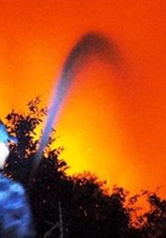 Kiên Giang: Cháy hơn 50ha rừng sản xuất U Minh Thượng