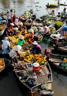 Sôi động chợ nổi Cái Răng dịp cận Tết