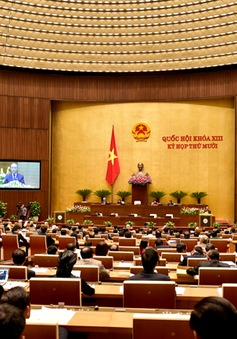 Các đại biểu tập trung bàn thảo nhiều nội dung quan trọng về kinh tế