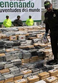 Cảnh sát Colombia - Mexico bắt giữ 2 tấn ma túy