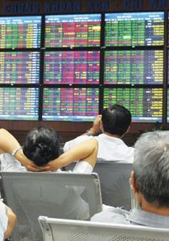 Tháng 1, tỷ lệ IPO thành công của doanh nghiệp đạt 80%