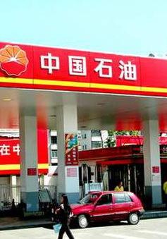 Lợi nhuận của PetroChina giảm 82%