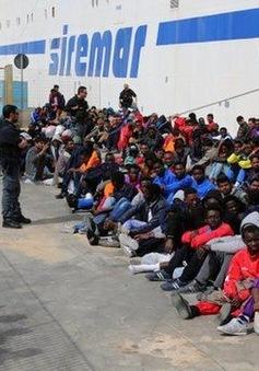 Các sự kiện quốc tế nổi bật năm 2015: Làn sóng người di cư và gia tăng khủng bố