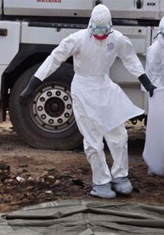 Một năm dịch Ebola hoành hành khắp Tây Phi