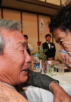 Hai miền Triều Tiên tổ chức đoàn tụ gia đình