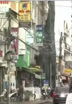 Ngăn chặn hiện tượng chèn ép du khách dịp Festival hoa Đà Lạt