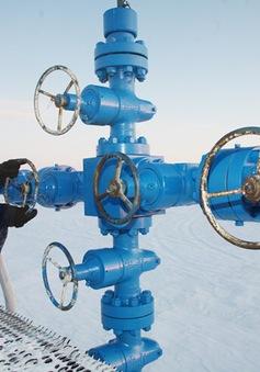 Nga ngừng đàm phán với Thổ Nhĩ Kỳ về dự án khí đốt