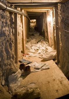 Mexico phát hiện đường hầm ma túy gần biên giới Mỹ
