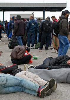 EU thông qua kế hoạch phân bổ 120.000 người di cư