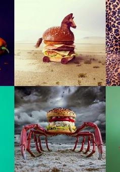 Những sáng tạo tuyệt vời từ chiếc bánh burger