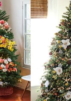 Độc đáo những cây thông Noel phủ ngập hoa