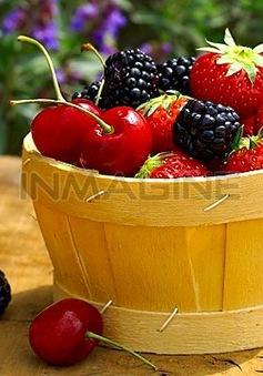 13 loại trái cây giúp bạn giảm cân (Phần 1)