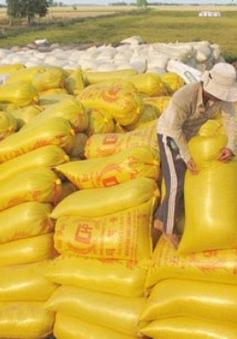 Kết thúc thu mua tạm trữ lúa gạo vụ Đông Xuân