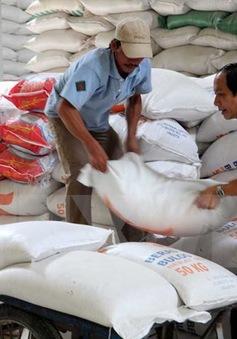 Cấp thiết xây dựng thương hiệu gạo Quốc gia Việt Nam