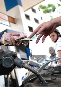 Cổ phiếu dầu khí tăng giá