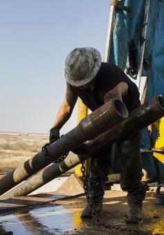 Giá dầu xuống thấp do nguồn cung dư thừa