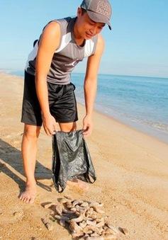 Hải sâm liên tục dạt vào bờ biển Thừa Thiên - Huế
