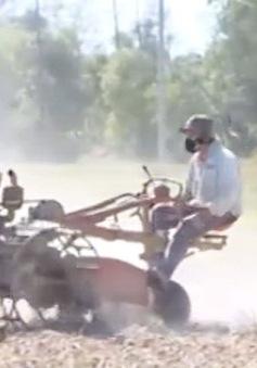 Quảng Trị: Thiếu nước sản xuất vụ Hè Thu