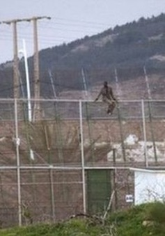 Chết ngạt vì cố di cư sang châu Âu