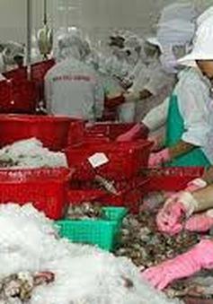 Gỡ khó cho tôm Việt Nam xuất khẩu