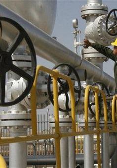 Iran xúc tiến 50 dự án dầu mỏ mới trong tương lai gần