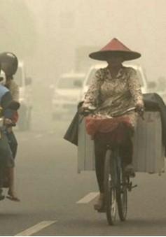 Hãng hàng không Indonesia sẽ tổn thất 25 tỷ Rupiah do khói bụi