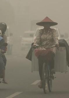Indonesia cân nhắc ban bố tình trạng khẩn cấp vì cháy rừng