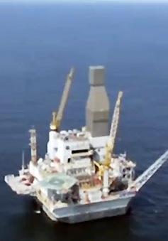 Giá dầu giảm sẽ thúc đẩy tăng trưởng kinh tế