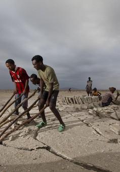Guinea: Kĩ thuật giúp cải tiến nghề làm muối