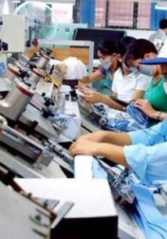 Nhiều lao động tại Hàn Quốc chưa về nước dù hết hợp đồng