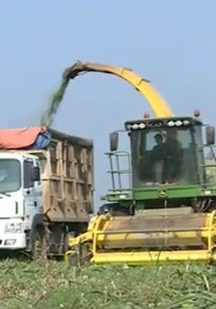 Bỏ các loại phí không cần thiết trong nông nghiệp