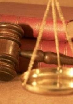 Công bố 11 Luật, 1 Nghị quyết và 1 Pháp lệnh