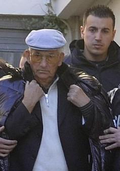 Đức bắt giữ 8 nghi can mafia người Italy