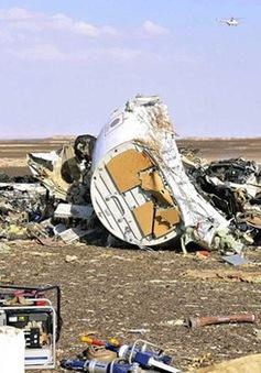 Vụ máy bay Nga rơi tại Ai Cập: Tiến hành nhận dạng thi thể các nạn nhân