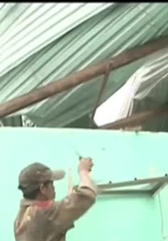 Quảng Ngãi: Giông, lốc gây thiệt hại nặng nề