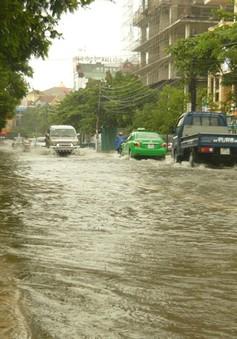 Nghệ An: Nhiều tuyến đường sạt lở, ngập lụt do mưa lớn