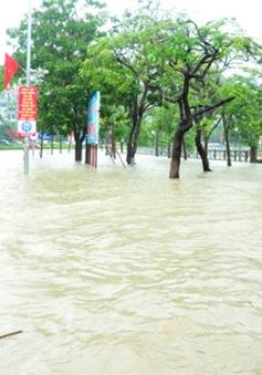 Mưa lớn kéo dài, Quảng Ninh tiếp tục sạt lở tại nhiều khu vực