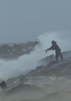 Mỹ tuyên bố tình trạng khẩn cấp do bão Joaquin