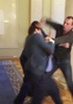 Ukraine: Hai nghị sĩ đánh nhau ngay tại đại sảnh Quốc hội