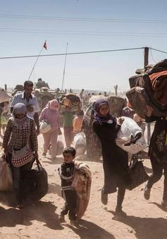 Liên đoàn Arab kêu gọi chấm dứt cuộc khủng hoảng Syria
