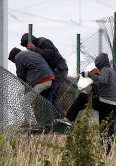 Pháp - Đức thúc đẩy xử lý khủng hoảng di cư